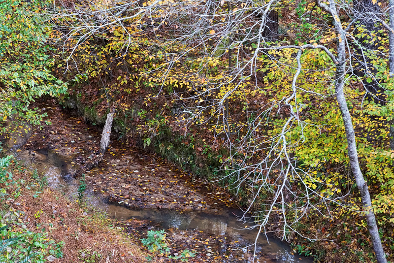 View of creek from New Hope Valley Railroad