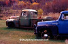 Old Trucks in Autumn, Vernon County, Wisconsin