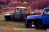 Old Trucks in Autumn, Vernon County, Wisconsin
