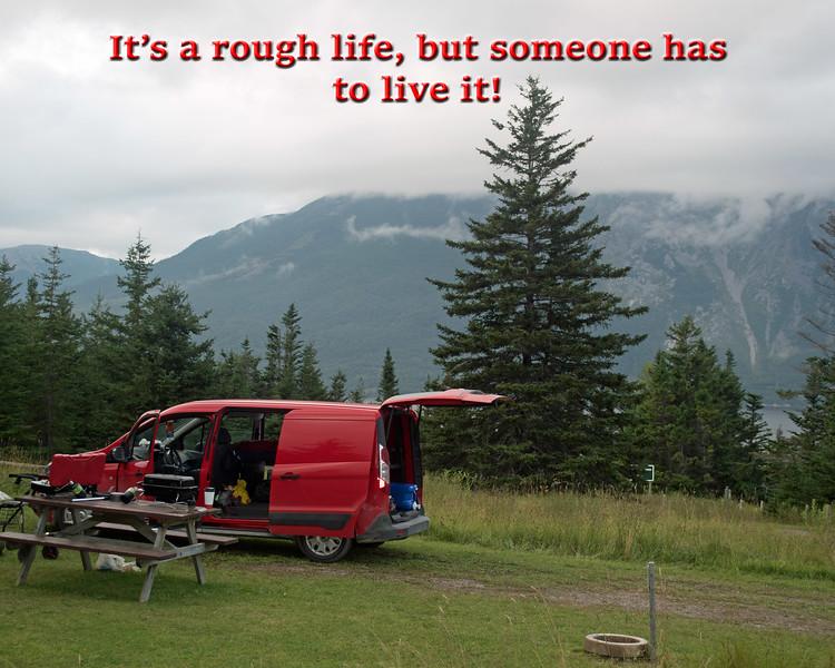 It's A Rough Life!
