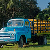 1950's International Harvester Truck
