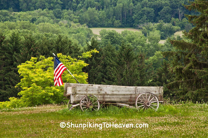 Buckboard Wagon with American Flag, Sauk County, Wisconsin