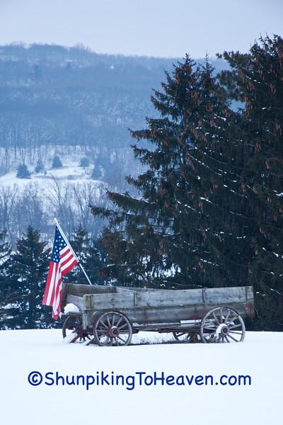 Patriotic Buckboard Wagon, Sauk County, Wisconsin