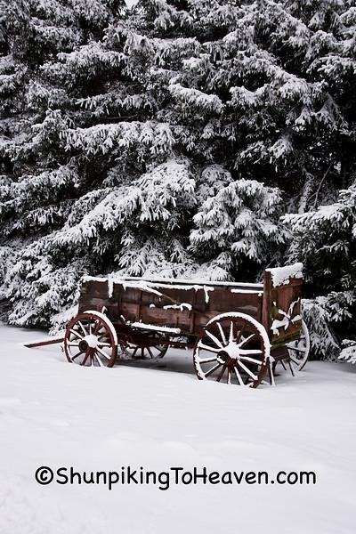 Old Buckboard Wagon in the Snow, Dane County, Wisconsin