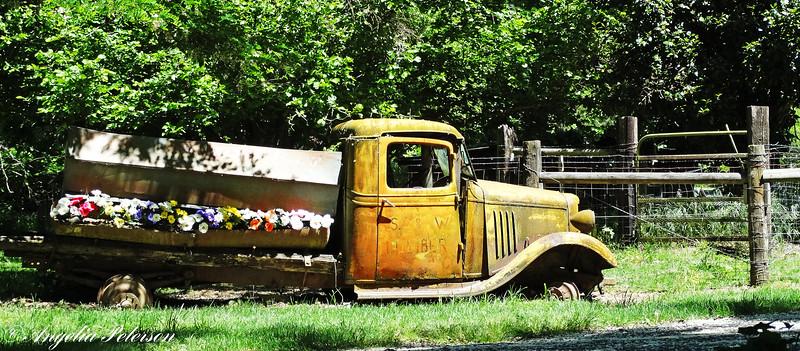 S&W Lumber Truck