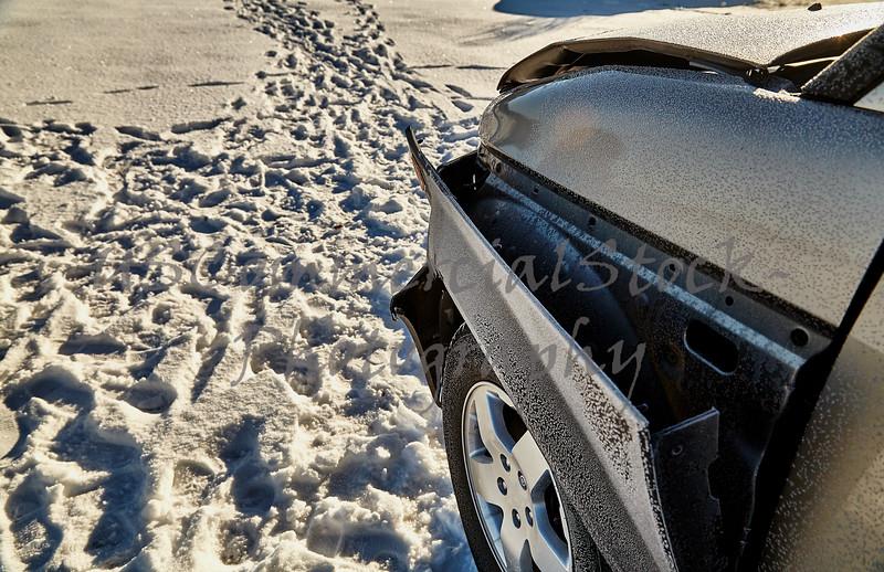 Car hits deer