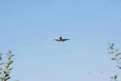 4 Swallows & 2 Aircrafts
