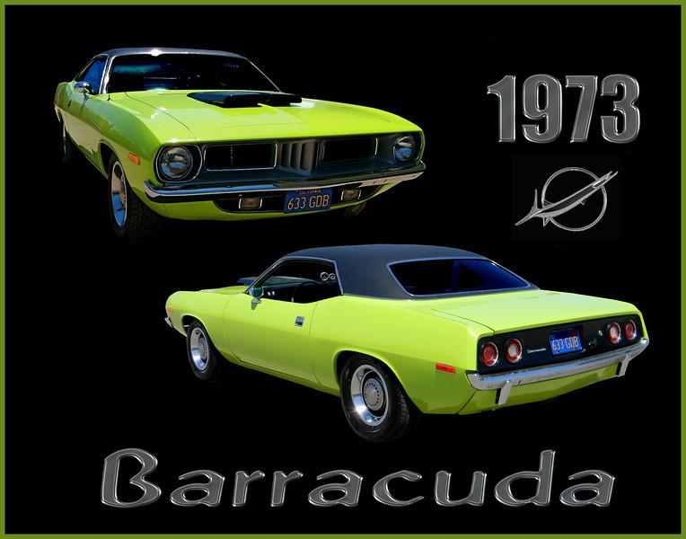 proof barracuda3