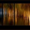 Last of the evening light - Barbara Lee - Wanaka
