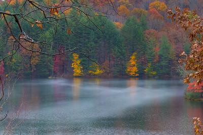 Mist on Lake Julia, Dupont State Forest North Carolina