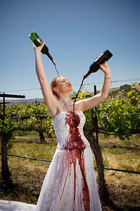 1826-d3_Stacy_Trash_the_Dress_Livermore_White_Crane_Winery