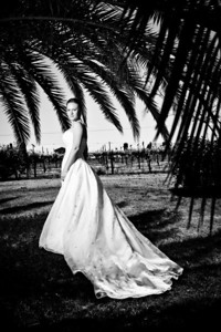 1747-d3_Stacy_Trash_the_Dress_Livermore_White_Crane_Winery