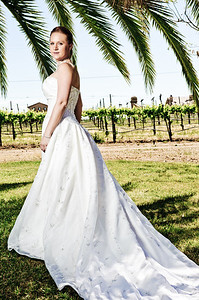 1749-d3_Stacy_Trash_the_Dress_Livermore_White_Crane_Winery