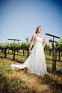 1714-d3_Stacy_Trash_the_Dress_Livermore_White_Crane_Winery