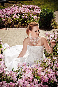 1721-d3_Stacy_Trash_the_Dress_Livermore_White_Crane_Winery
