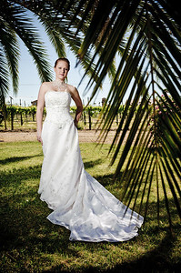1755-d3_Stacy_Trash_the_Dress_Livermore_White_Crane_Winery