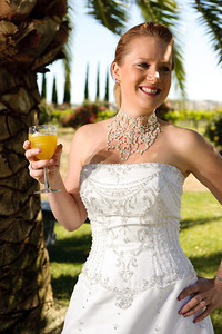 1768-d3_Stacy_Trash_the_Dress_Livermore_White_Crane_Winery