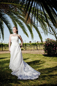 1762-d3_Stacy_Trash_the_Dress_Livermore_White_Crane_Winery