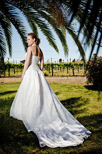 1746-d3_Stacy_Trash_the_Dress_Livermore_White_Crane_Winery
