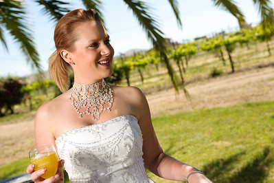 1771-d3_Stacy_Trash_the_Dress_Livermore_White_Crane_Winery