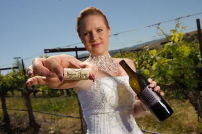 1799-d3_Stacy_Trash_the_Dress_Livermore_White_Crane_Winery