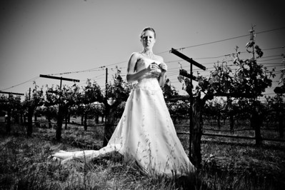 1701-d3_Stacy_Trash_the_Dress_Livermore_White_Crane_Winery