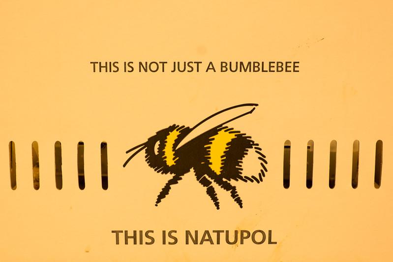 Not a Bumblebee