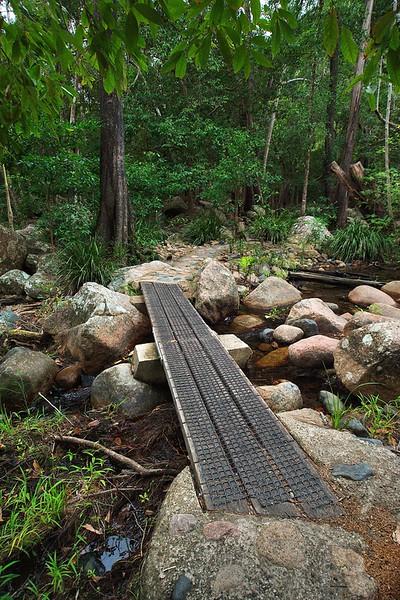 Waterview Creek boardwalks