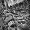 Stone steps down to Waterview Creek