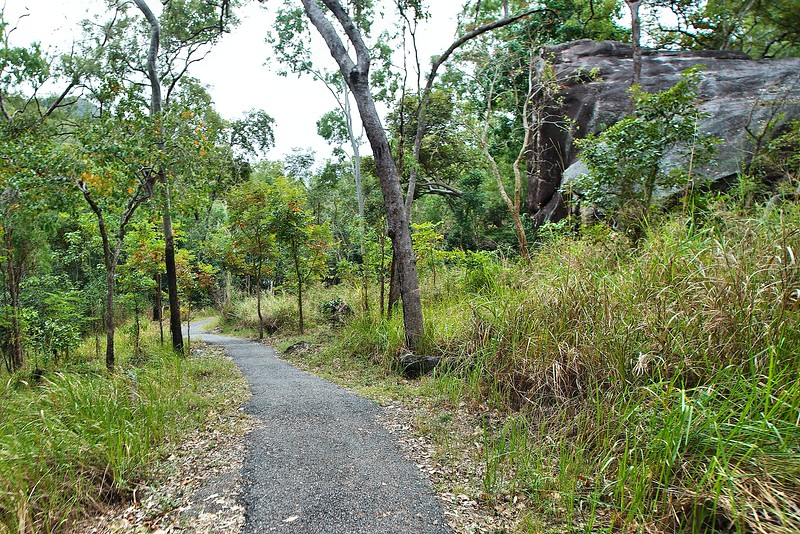 First section of the Jourama Falls walking track  - nice easy bitumen
