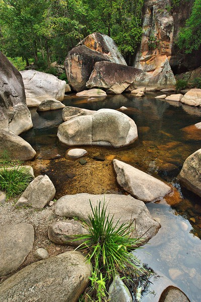 Waterview Creek rock pool