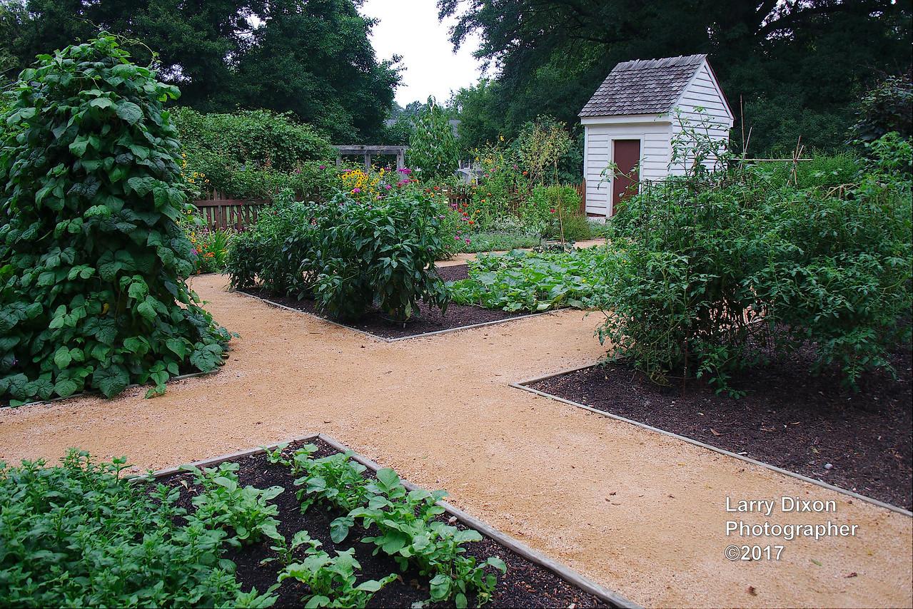 Vegetable garden based on old documents
