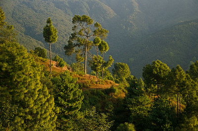 A Mountain Village In Nepal (X)