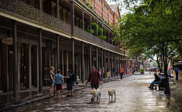 New Orleans, After The Rain