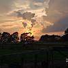 Lea's horse ranch near Dunn NC