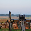207 Gettysburg Sunrise High Water Mark
