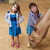 Clio and Ani later fed the camel.