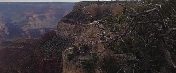 Arizona- Grand Canyon