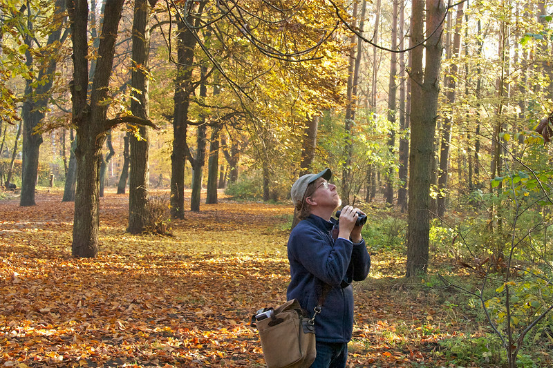 bird-watching with Rick Prum in Grunewald forest