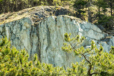 Cheakamus Canyon Picnic Site