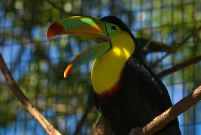 Costa Rica (107 of 104)