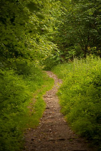 Kilarney Path
