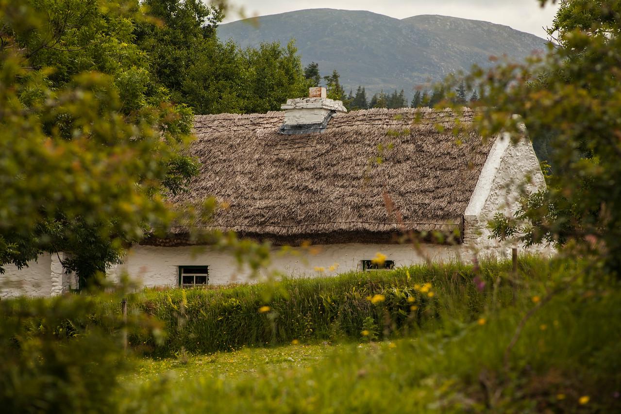 Kilkenny Thatcj Cottage