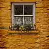 yellow wall n window