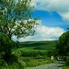 Irish Drive