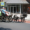 What to do on a fine holiday in Bruekelen - down the main street comes a whole collection of horse-drawn buggies, of which these seemed to be the cutest - all headed for the Bruekelen Bridge, of course.