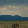 Cowboy View