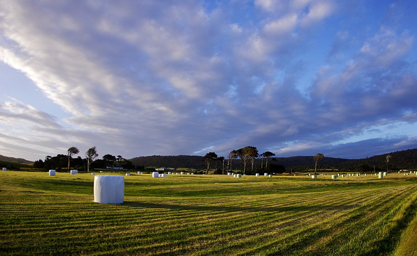 Haybales at sunset
