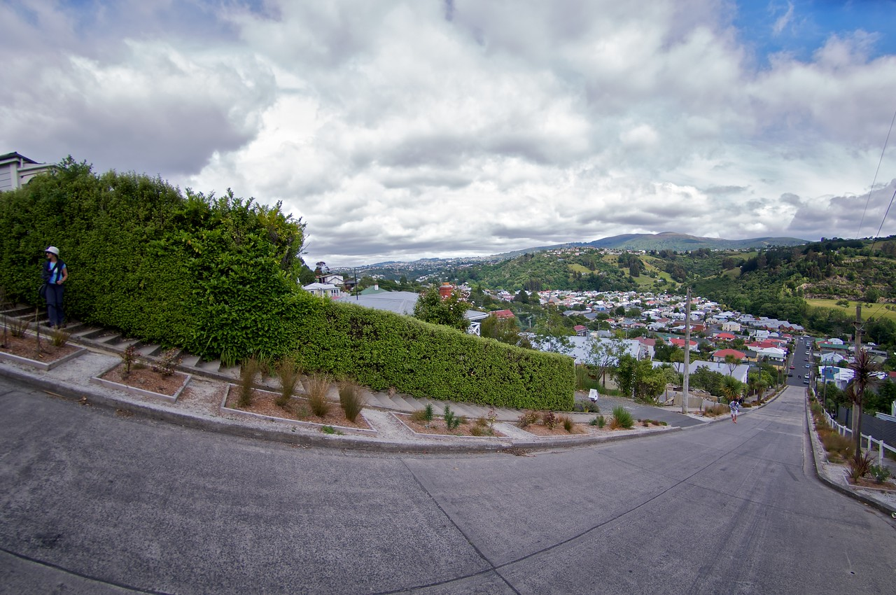 Baldwin St - World's steepest street