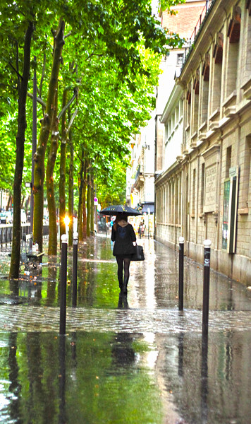 Paris Rains